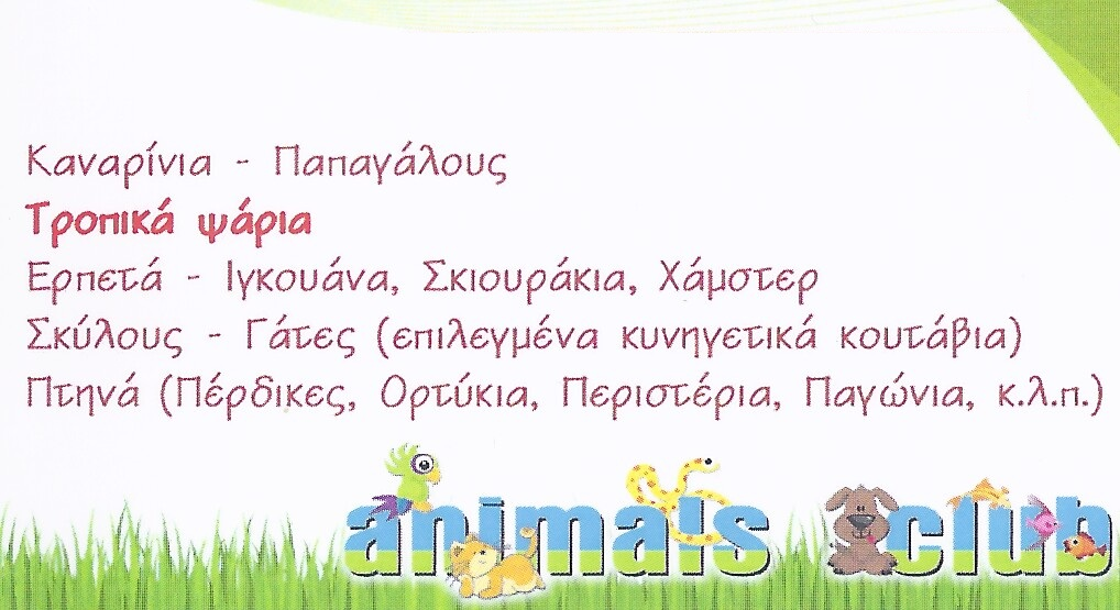 http://www.lovemypet.gr/images/stories/N.ATTIKHS/LYKOVRYSH/PETSHOPS.LYKOVRYSH/pet-shops-animals-club-lykovrysh-3.jpg