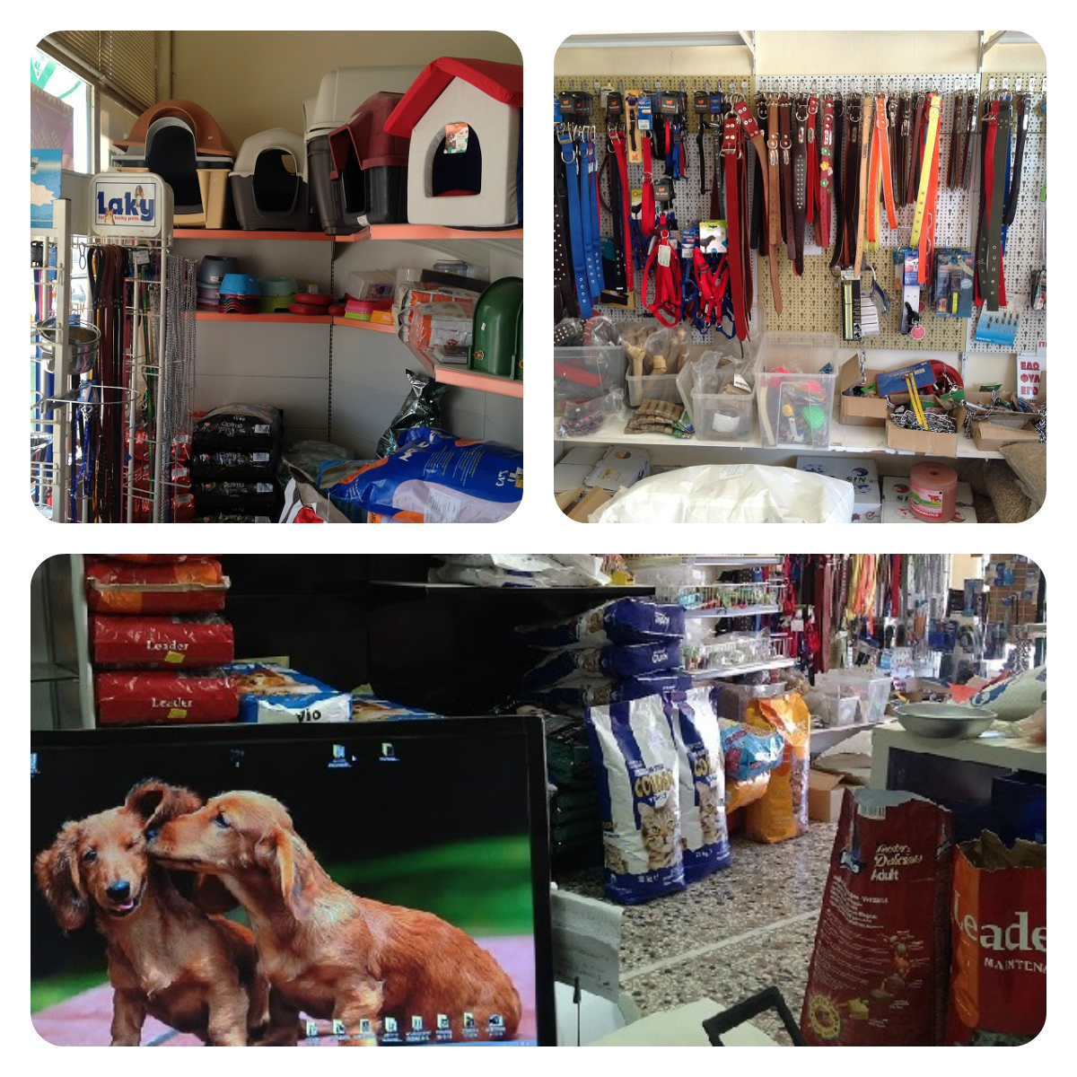 pet_shop_prosfores-koufalia-thessalonikis-konstantinidis-antonis-collage-2.jpg